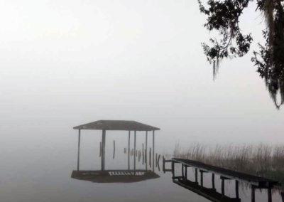 Foggy Dock Lake Reedy